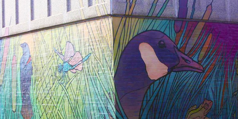 Mural Art On the Streets of Monona and Madison